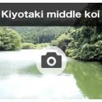 kiyotaki middle